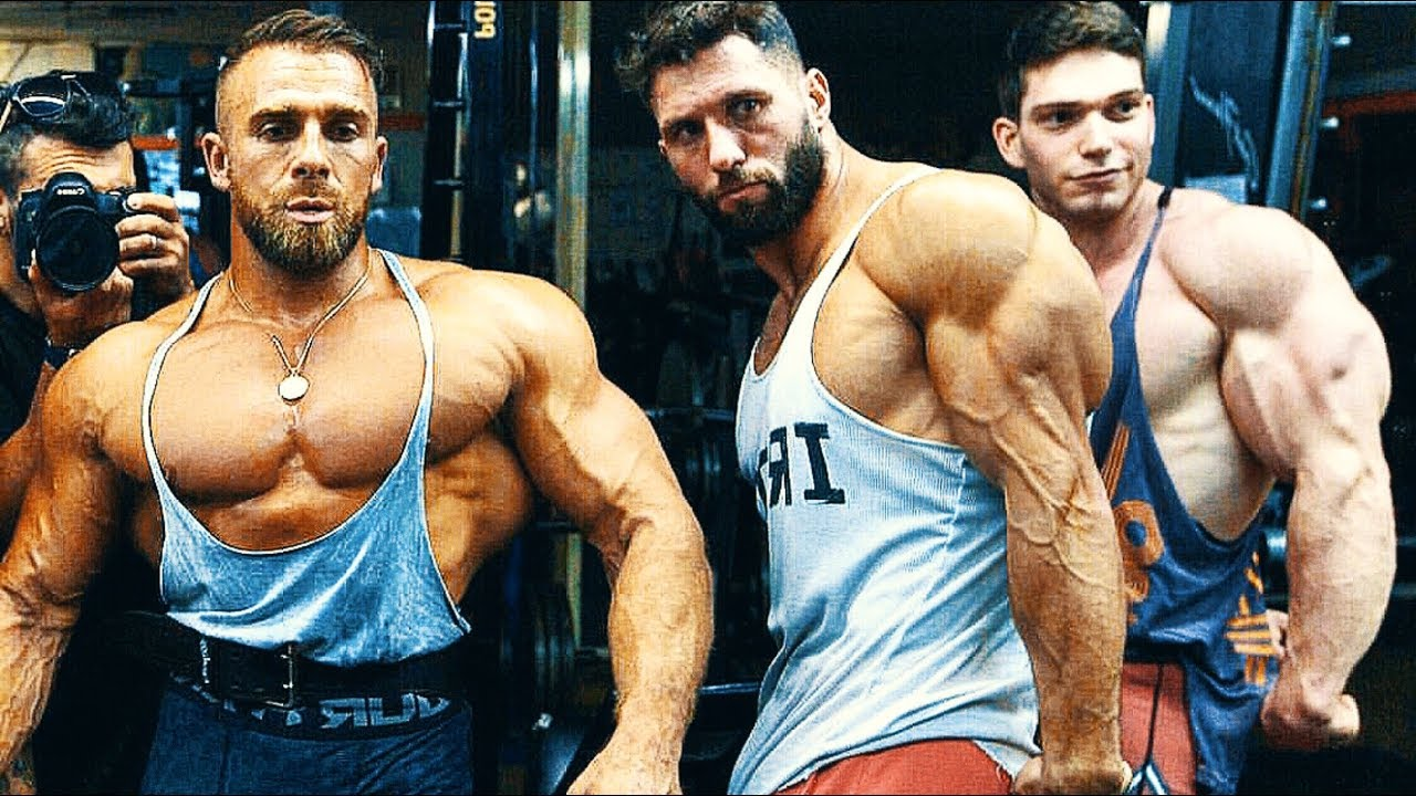 How you can Transition to some Bodybuilding Lifestyle